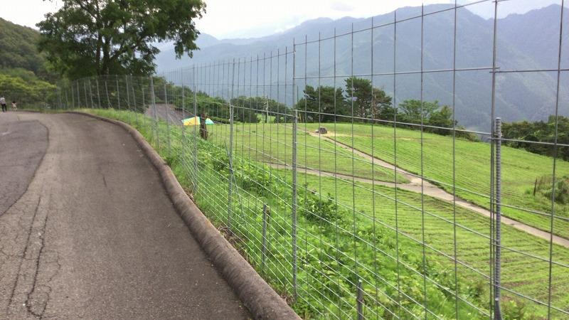 翠波高原の柵