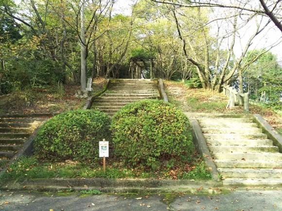 滝の宮展望台階段